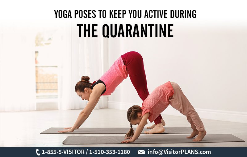 Yoga Poses To Keep You Active During The Quarantine